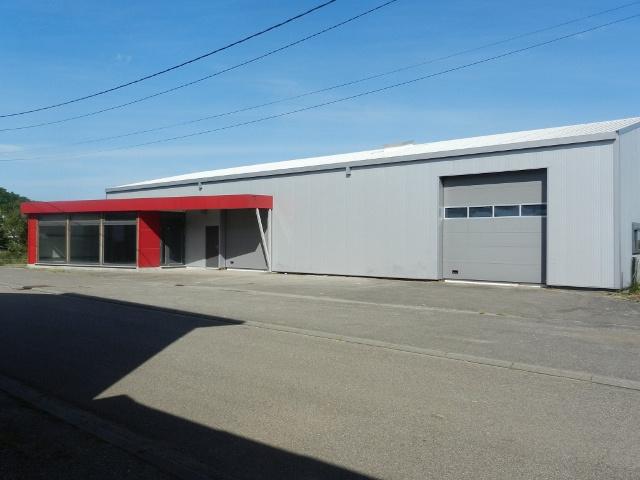 Vente Immobilier Professionnel Local professionnel Tantonville (54116)